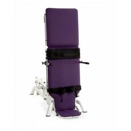 Camilla Bipedestación eléctrica, altura regulable,goniómetro y ruedas escamoteables (CE-2221-PI)