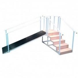 Escalera 5 peldaños con rampa